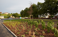 Bepflanzung und Gestaltung